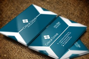 Critical Group Business Card
