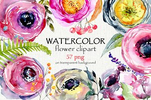 Watercolor flowers, branches, 57 png
