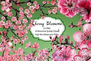 Cherry Blossom Hand Watercolor