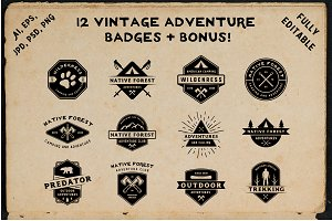 12 vintage adventure badges