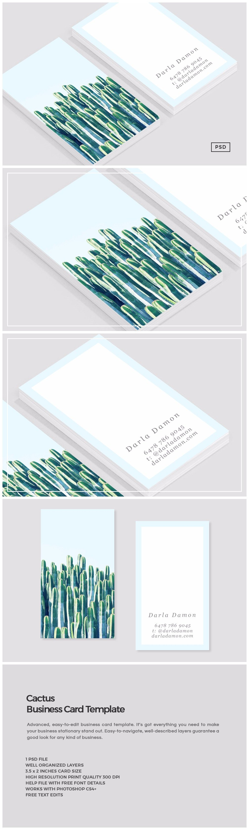 Cactus business card template business card templates creative cactus business card template business card templates creative market reheart Gallery