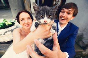 Little cat looks surprised