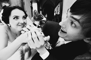 Newlyweds grimace playing with a cat