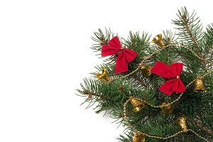 branch of Christmas tree with short needles decorated bells and bows isolated on white background