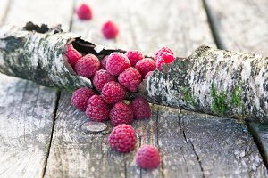 Raspberry on bark
