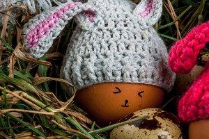 Rustic still life egg in bunny's hat