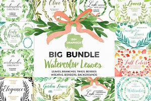 Bundle - Tropical Watercolor Leaves