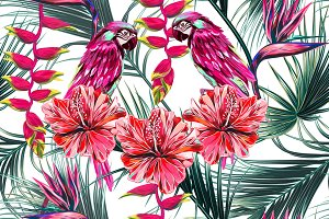 Parrots, tropical flowers pattern