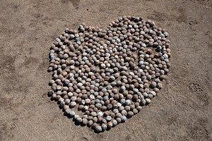 Macadamia Heart