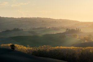 Autumn evening Val d'Orcia Web