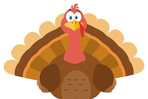 Turkey Bird Cartoon Mascot Character