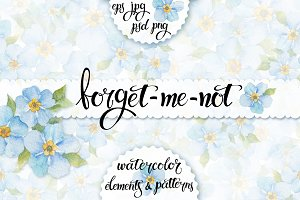Forget-me-not. Watercolor set.