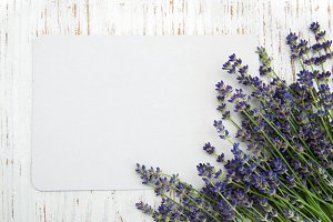 Lavender flowers with card