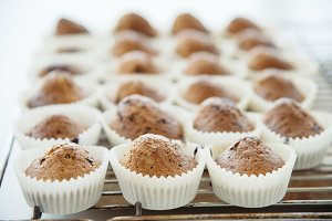 Homemade Muffins with Chocolate Chip