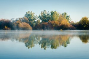 Fog over Guadiana  river