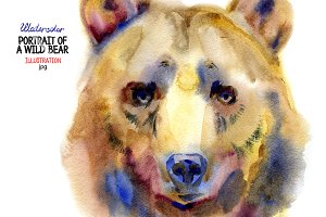 Watercolor wild bear portrait