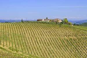 Beautiful Chianti region in Tuscany