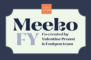 Meeko FY Family (2 fonts)
