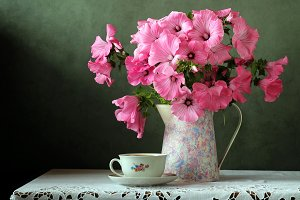 Still life with pink flowers.
