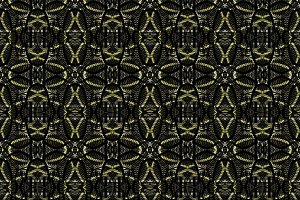 Modern Ornate Pattern