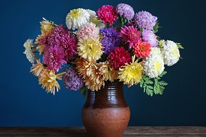 Asters and chrysanthemums.