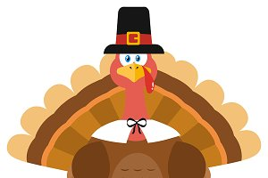 Turkey Bird Wearing A Pilgrim Hat