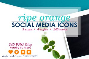 Ripe Orange Social Media Icons Pack