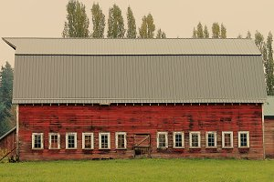 Old Barn in the Pacific Northwest