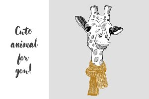 giraffe in a scarf