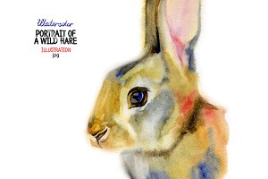 Watercolor wild hare portrait
