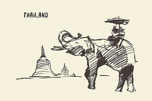 Elephant on a ride tour
