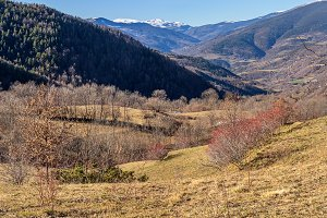 Landscape in the Catalan Pyrenees