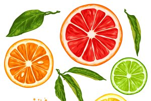 Set with citrus fruits slices.