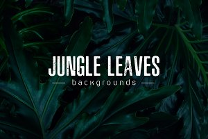 Real tropical leaves backgrounds