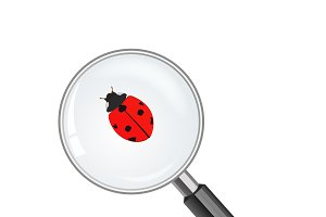 magnify glass and lady bug.