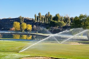 Sprinklers on the golf course