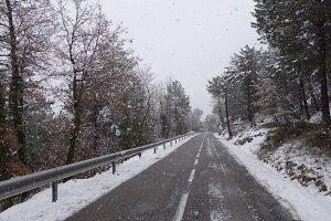 Road at winter