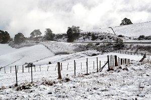 Tasmanian Snow Scene
