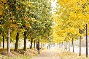 Blurred people walking under trees