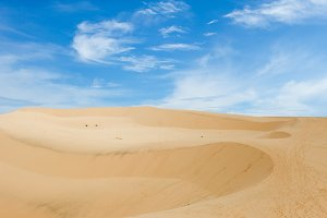 landscape from sand-dune