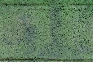 Solid structure of green grained background.