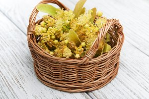 Basket with lime flowers