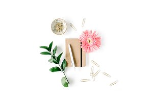 Gerbera daisy and craft diary