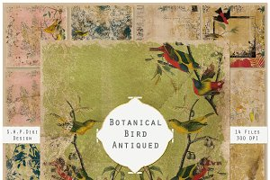 Antiqued Shabby Bird Botanical Pages