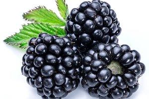 Three blackberries on the white