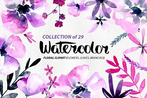 Purple & pink watercolor flowers png
