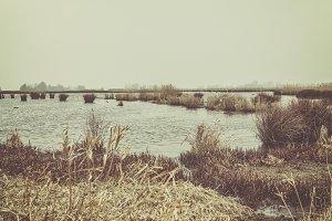 Winter water landscape