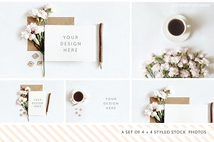 Styled Stock Photography Pack - 31