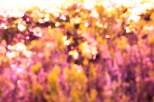 Abstract purple golden backdrop