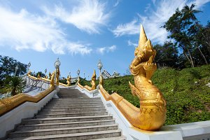 Stairs with golden dragons
